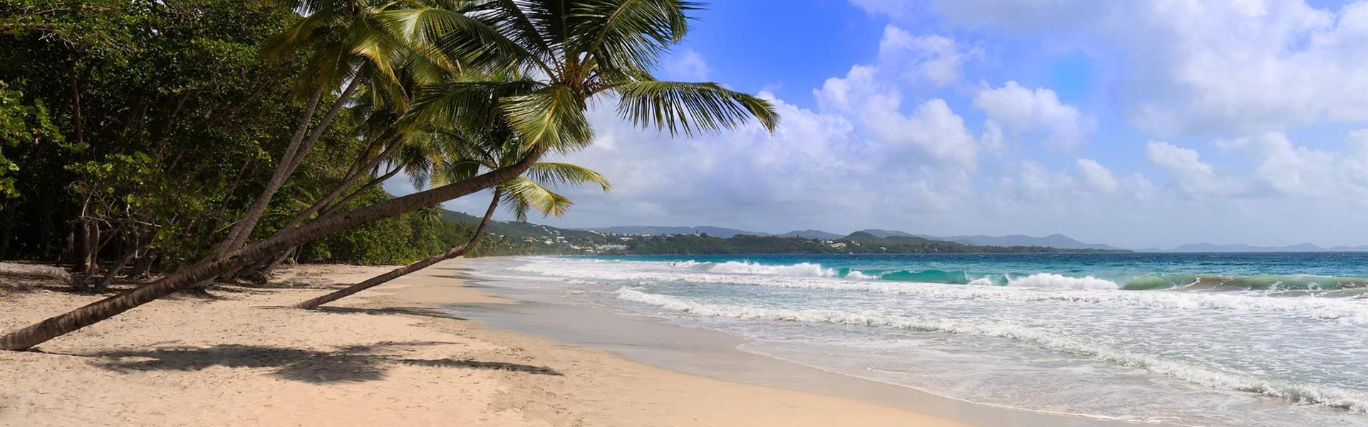 Martinik -