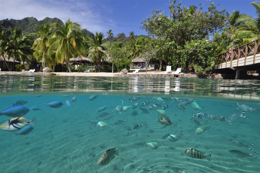InterContinental Resort And Spa **** - ostrov Moorea