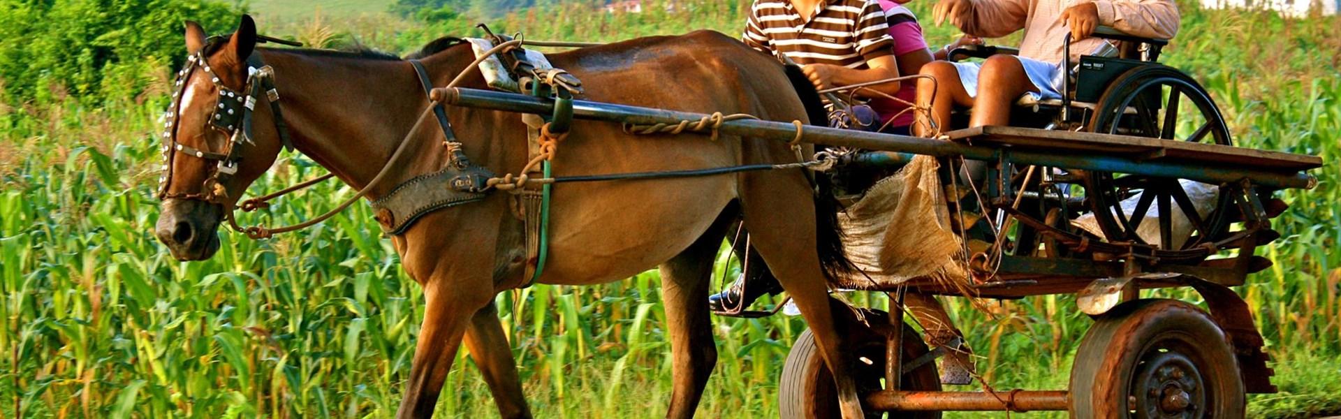 Kuba plná dobrodružství Fly & Drive