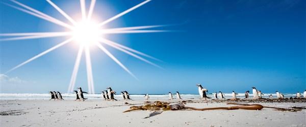 Antarktida -