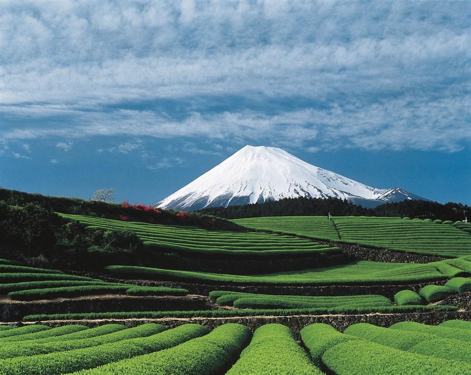 Japonsko: hledání japonské duše s českým průvodcem - Tchaj-wan