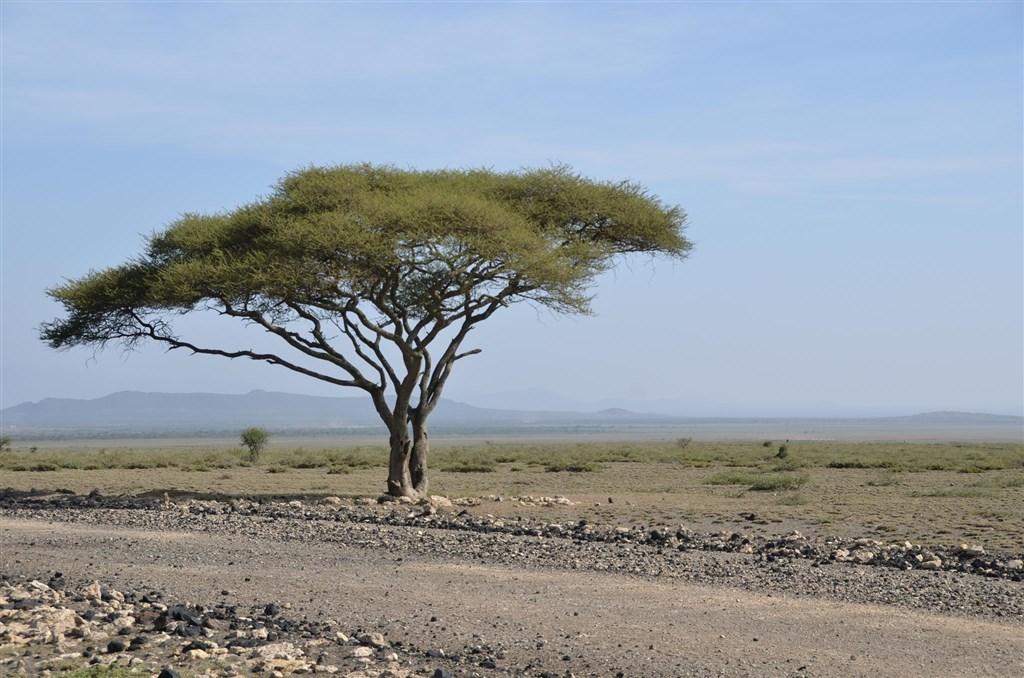 Expedice Východní Afrika s českým průvodcem - Tanzanie