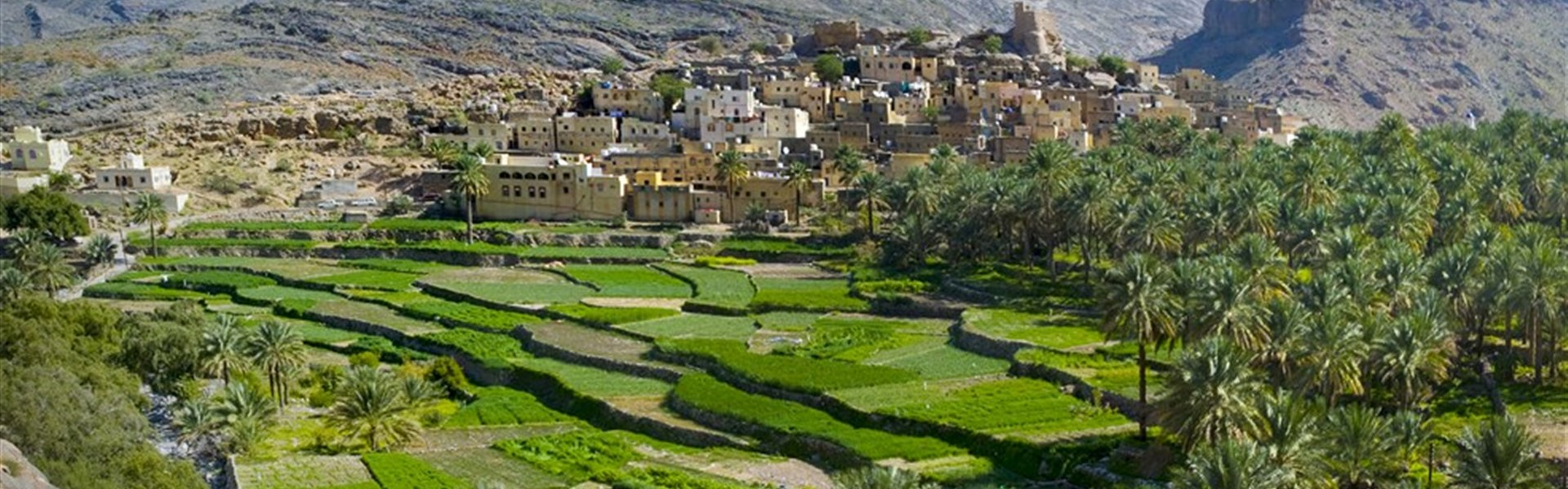 Self drive Ománem s pobytem u moře - Oáza pod horami Jabal Akhdar