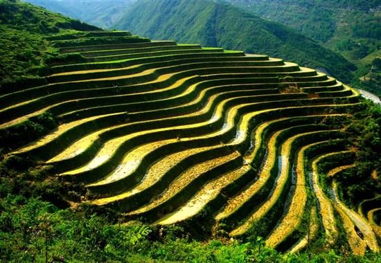 Okruh - Objevte severní Vietnam a Sapu s českým průvodcem - Asie - Sapa - krajina