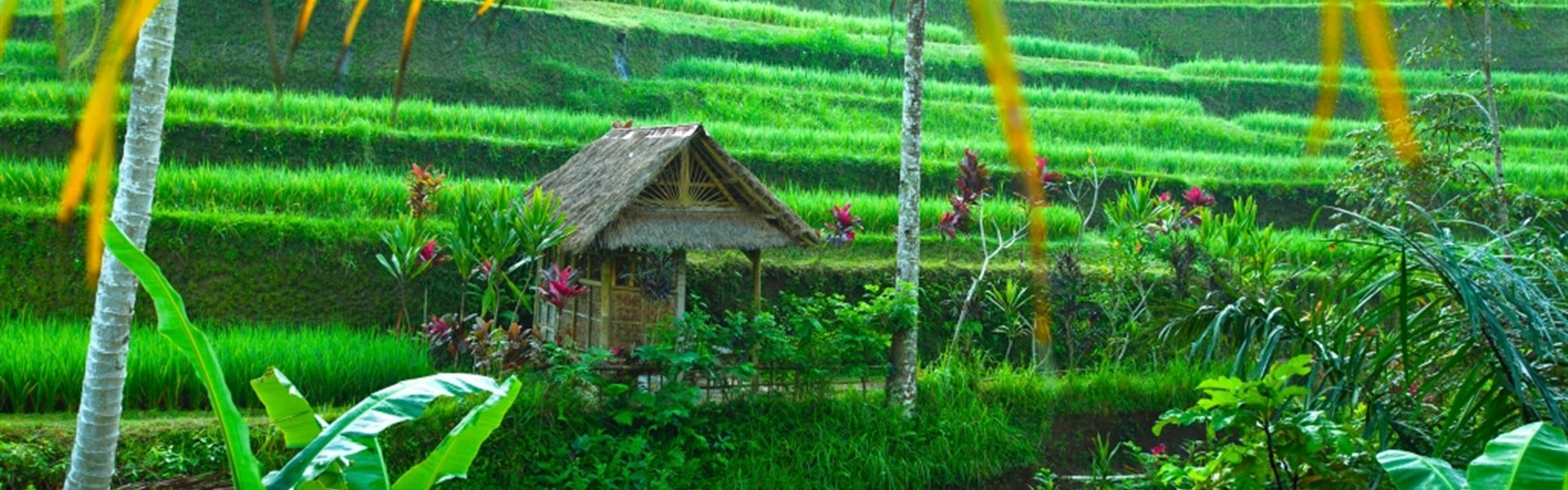 Poznávací zájezd - Dobrodružné Bali a Jáva s českým průvodcem -