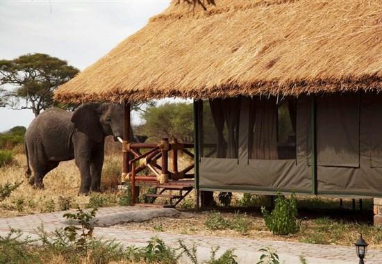 Vánoce na safari a na Zanzibaru - Tanzanie -