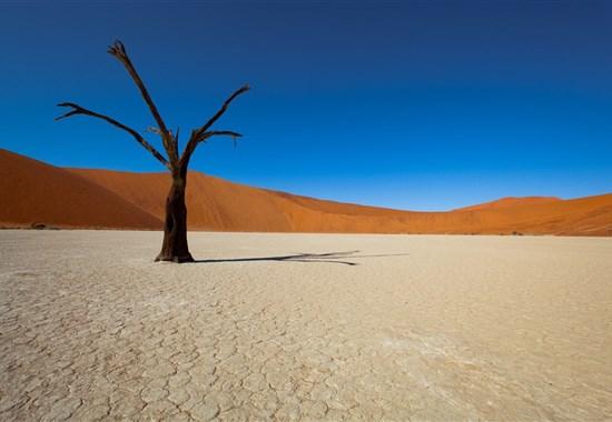To nejlepší z Namibie s českým průvodcem -  -