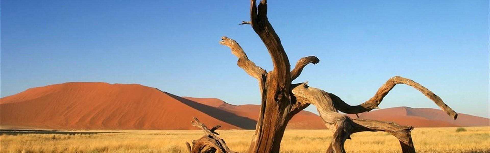 Perly Namibie - ČERVNOVÝ SPECIÁL - český průvodce -