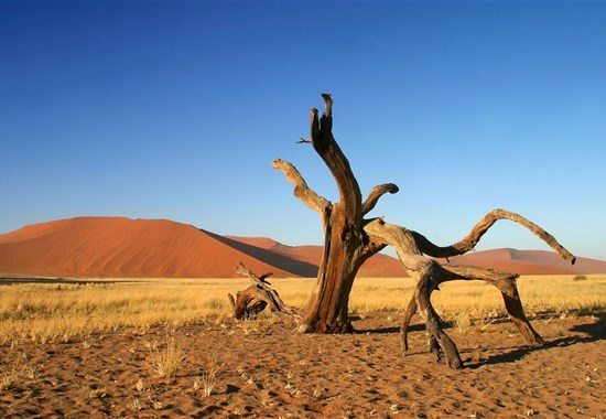 Perly Namibie - 7 nocí v Africe - český průvodce - Afrika
