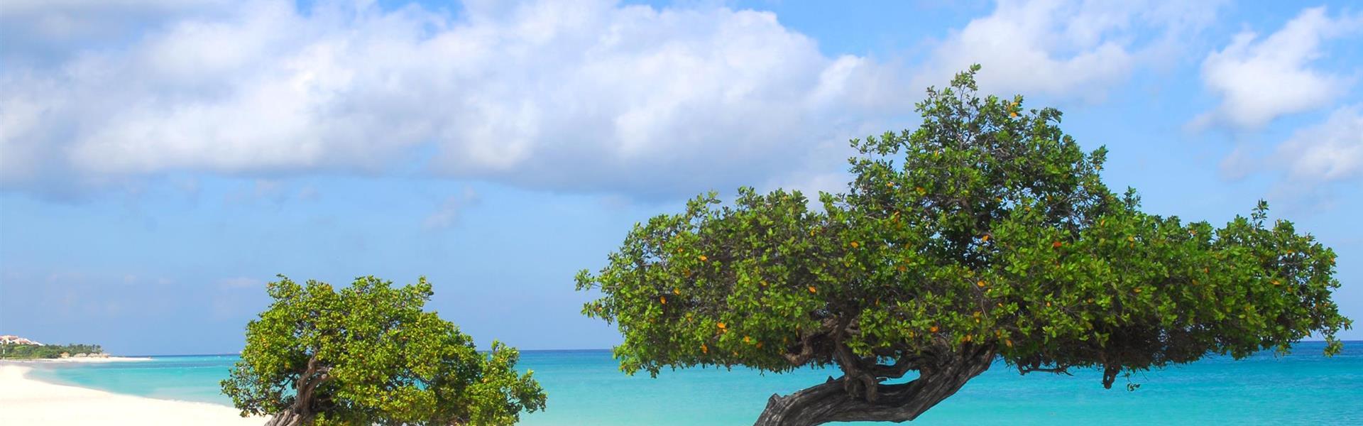 Aruba -