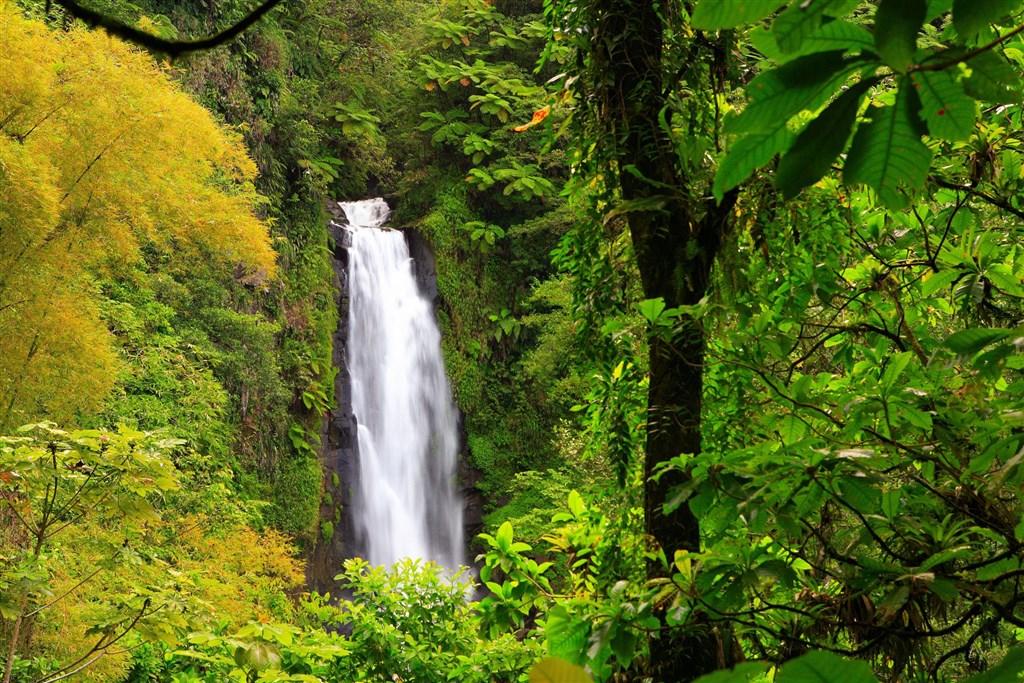 Francouzský šarm a divoká příroda s českým průvodcem - Tchaj-wan