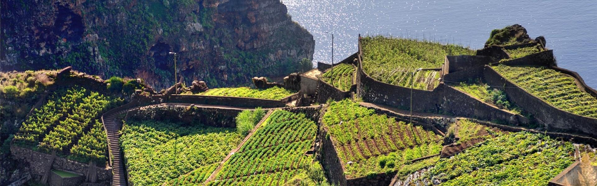Madeira s českým průvodcem
