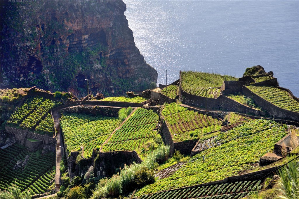 Madeira s českým průvodcem poslední 3 volná místa - Tchaj-wan