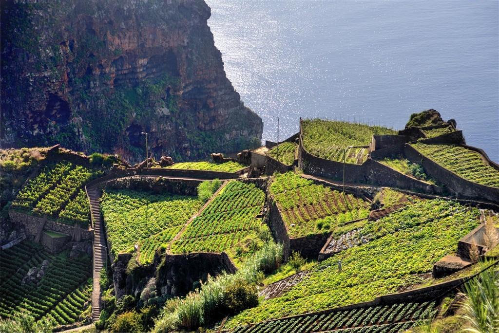 Madeira s českým průvodcem -