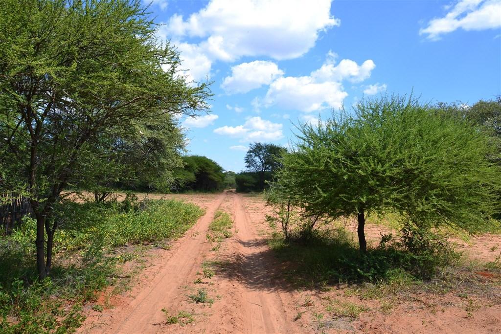 Na safari do Botswany s českým průvodcem - Botswana