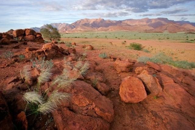Namibie - barvy pouště s anglickým průvodcem - Namibie