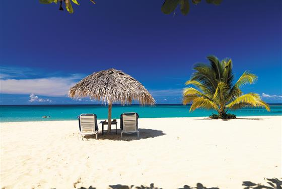 Marco Polo - Jamaica Inn -